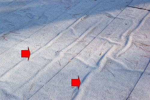Flat Roof Quot Rolls Quot Internachi
