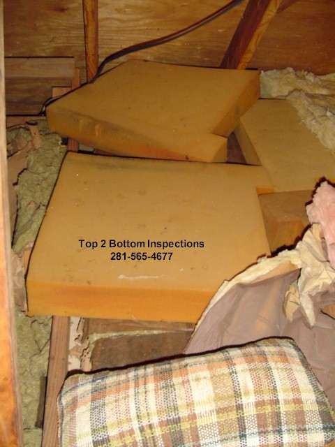 Something Top 2 bottom inspections not torture