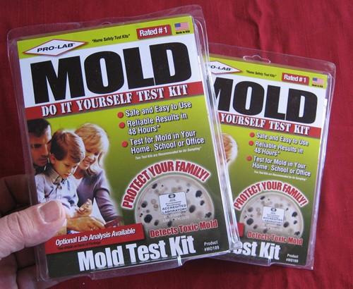 Mold Sampling Pump For Sale Internachi Inspection Forum