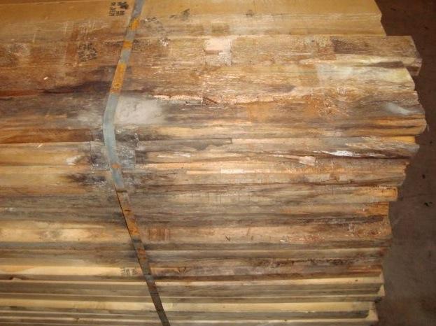 Mold on geren lumber