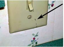 Las hormigas entrando o saliendo de un interruptor
