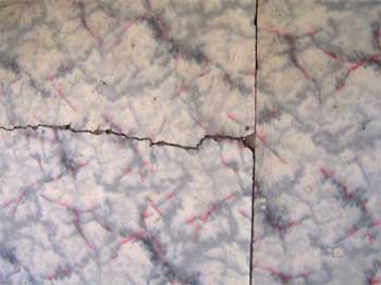 Cracked linoleum (courtesy of the U.S. Forest Service)