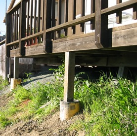 Flammable vegetation should be removed from beneath a raised deck
