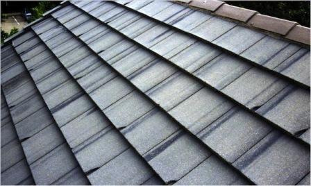 Mastering Roof Inspections: Tile Roofs, Part 4 - InterNACHI