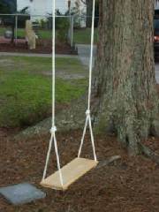 Tree Swing Inspection Internachi