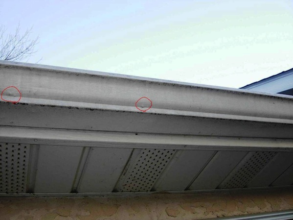 Mastering Roof Inspections Hail Damage Part 7 Internachi