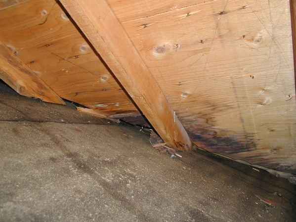 Mastering roof inspections attic area roof inspection for Roof sheathing material options