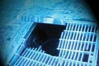 Pool Drain Hazards Inspection Internachi 174