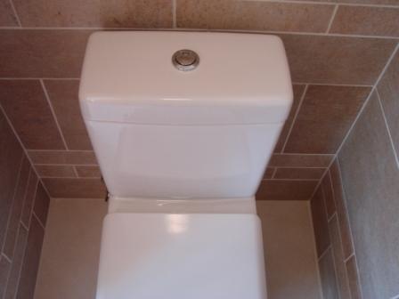 Dual_flush
