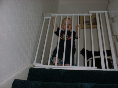 Child Proofing Windows And Stairs