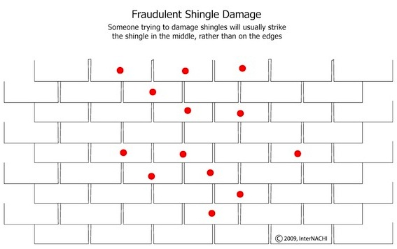 What does hail damage look like on shingles