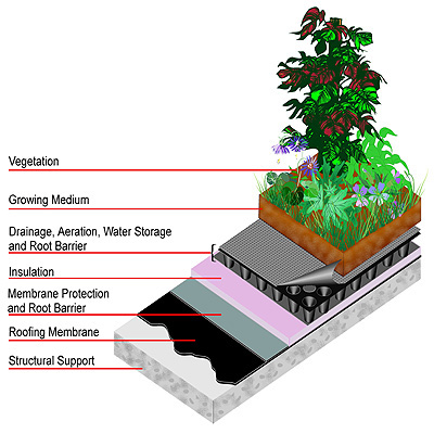 Green roof layering can be complex