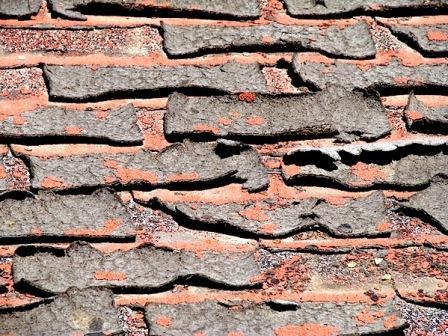 organic shingle delamination ASPHALT SHINGLE WEATHERING