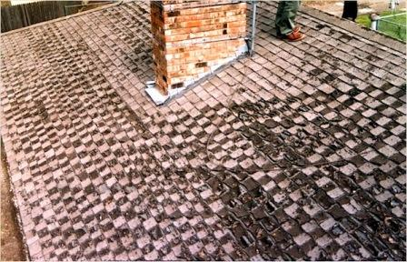 Mastering Roof Inspections: Asphalt Composition Shingles ...