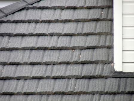 Mastering Roof Inspections Metal Roofs Part 5 Internachi