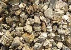 Vermiculite insulation