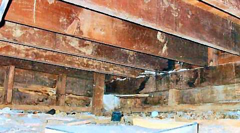 L inspection du vide sanitaire et les dangers li s au vide - Maison sans vide sanitaire humidite ...