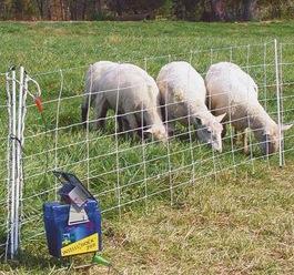 Une clôture électrique alimentée à l'énergie solaire
